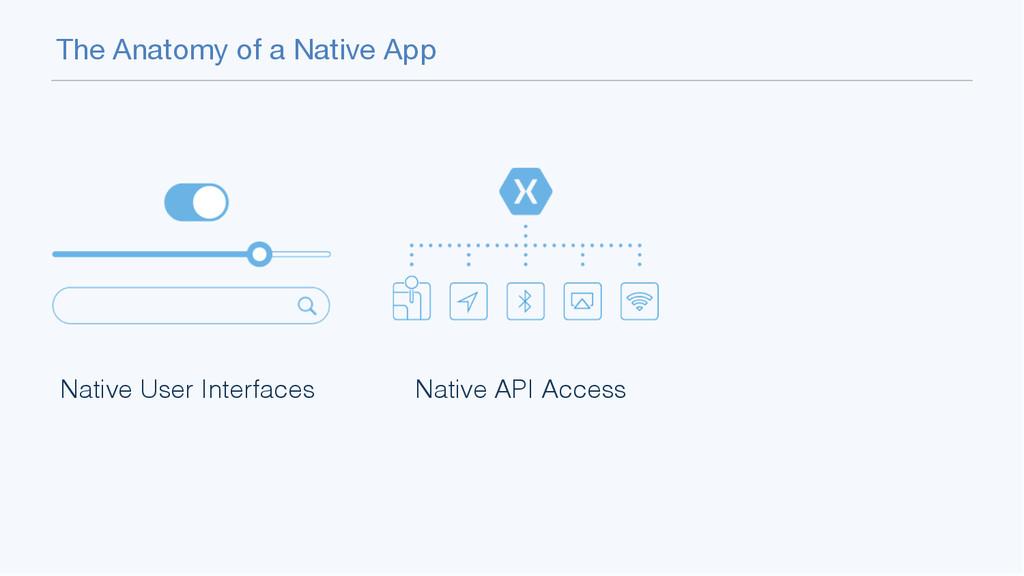 The Anatomy of a Native App Native User Interfa...