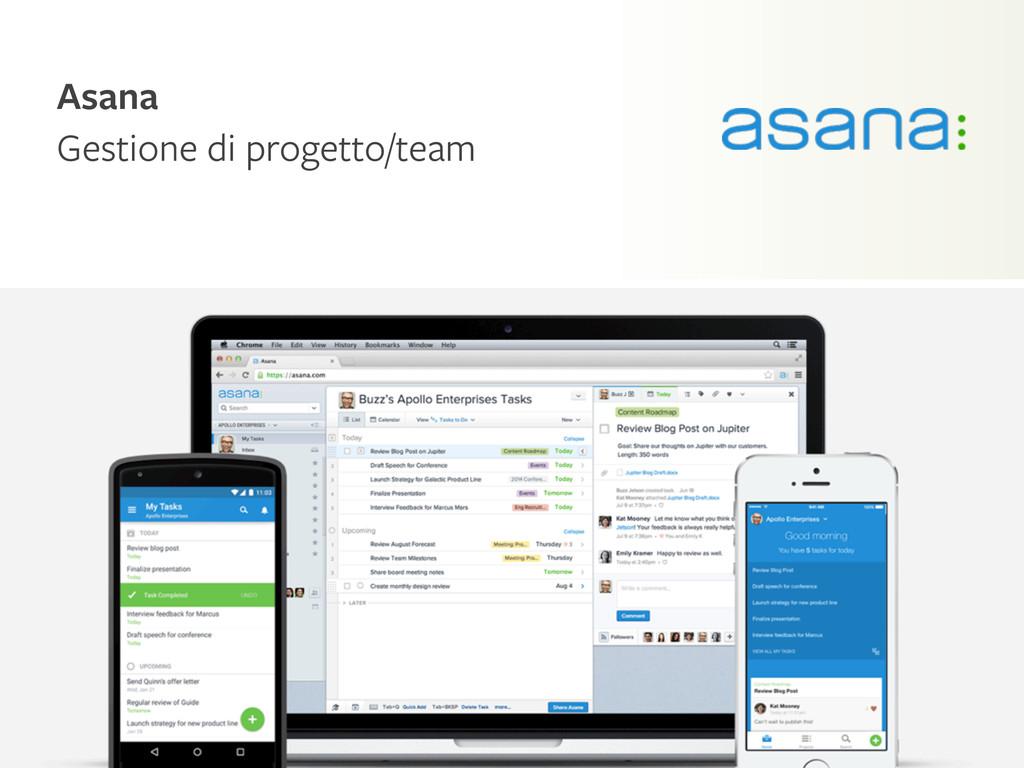 Kaleidoscope Asana Gestione di progetto/team