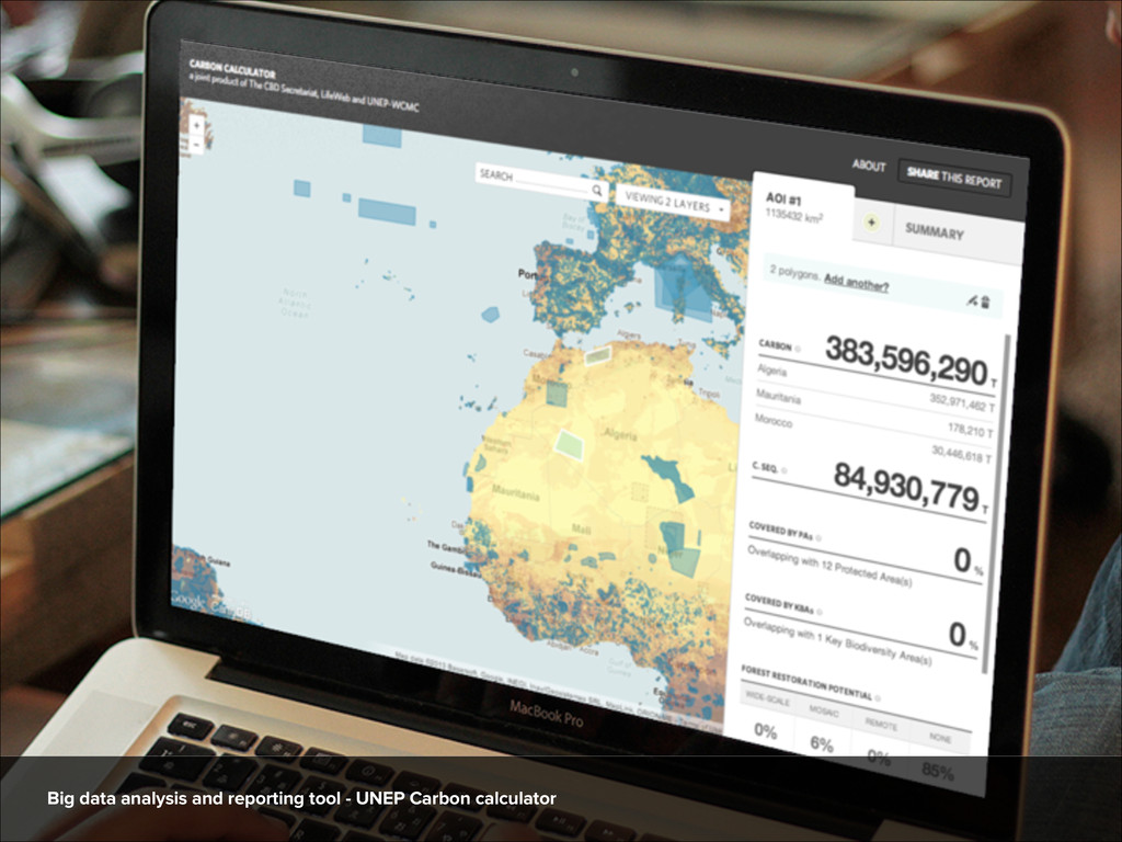 Big data analysis and reporting tool - UNEP Car...
