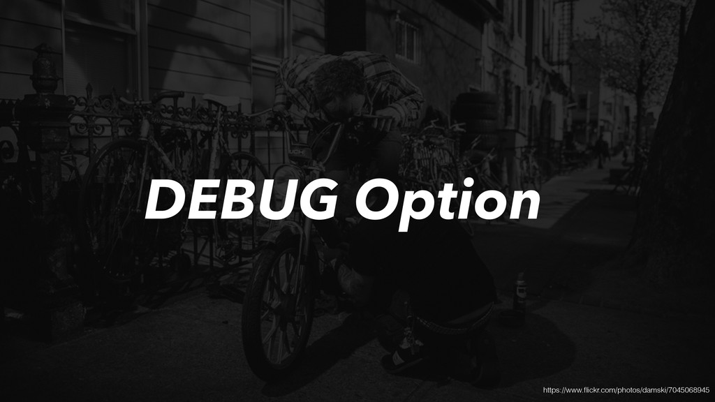 DEBUG Option https://www.flickr.com/photos/damsk...