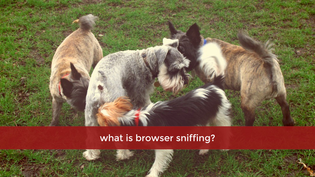 what is browser sniffing?