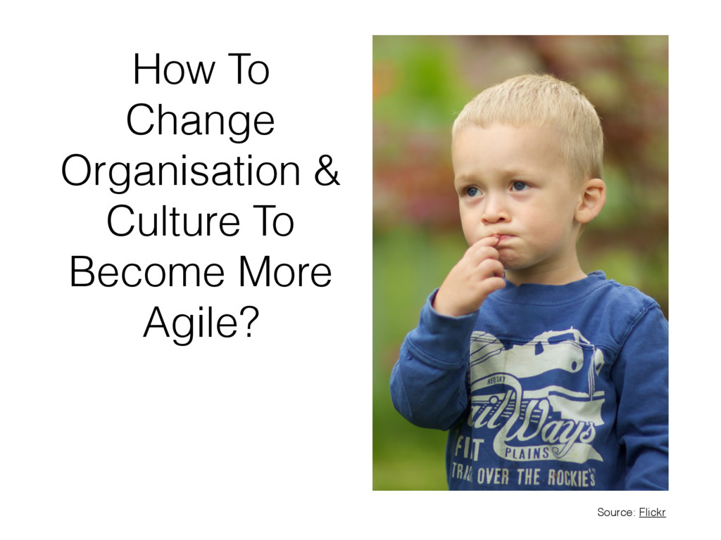 How To Change Organisation & Culture To Become ...