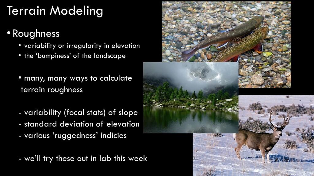 Terrain Modeling •Roughness • variability or ir...