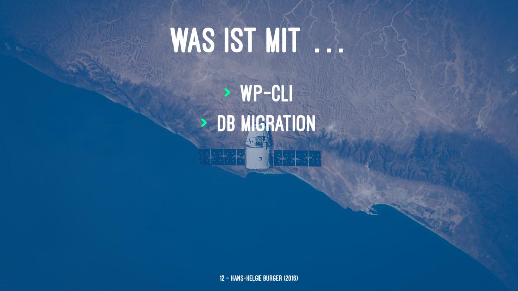 WAS IST MIT … > WP-CLI > DB Migration 12 — Hans...