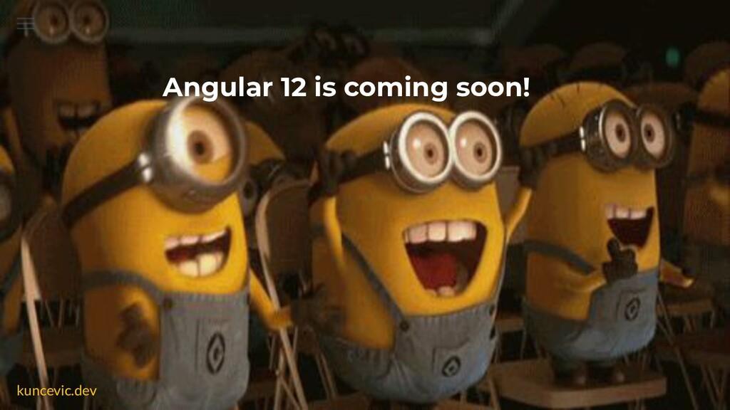 kuncevic.dev Angular 12 is coming soon!