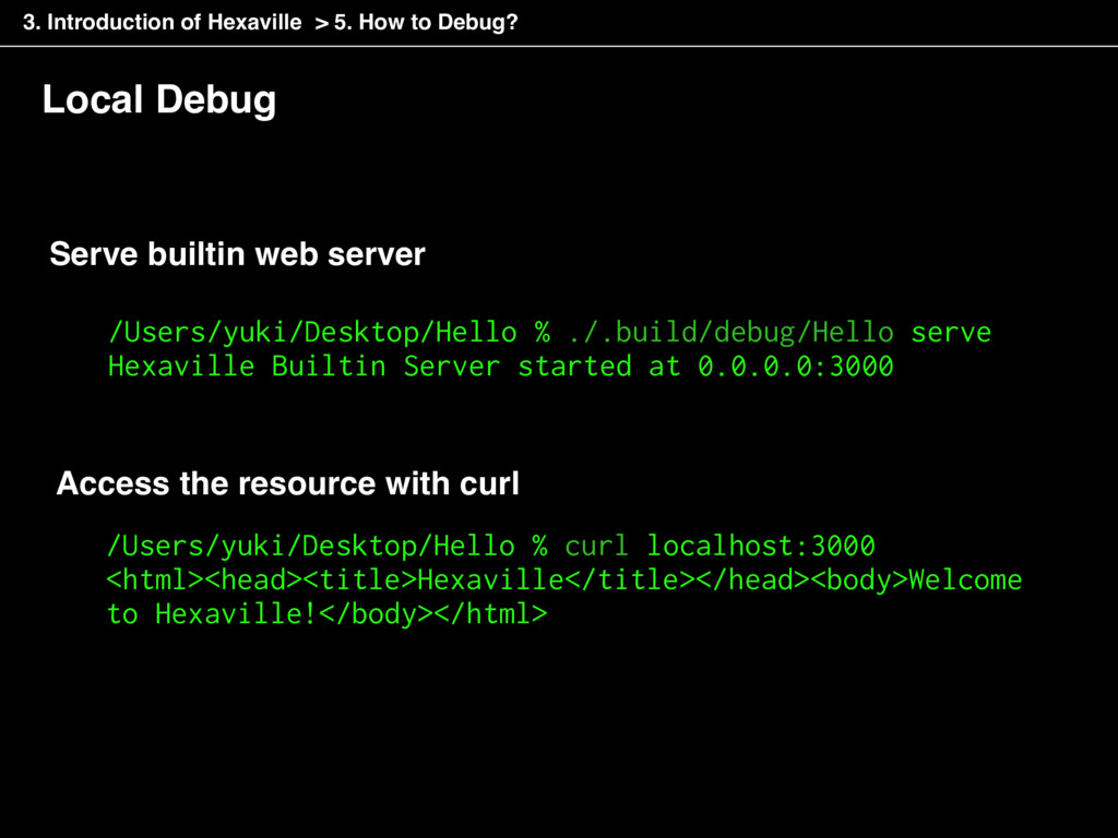 Local Debug Access the resource with curl /User...