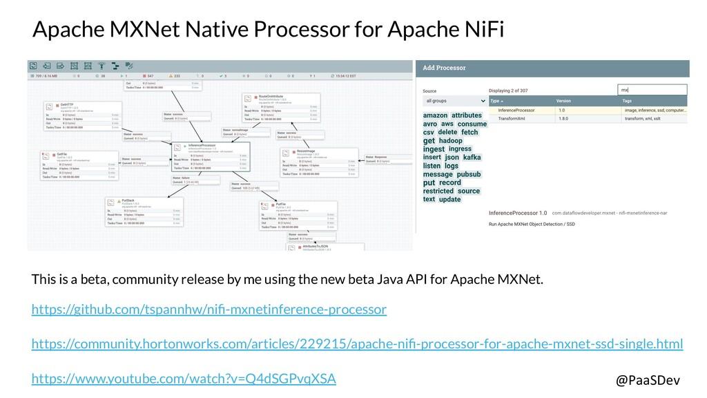 @PaaSDev Apache MXNet Native Processor for Apac...