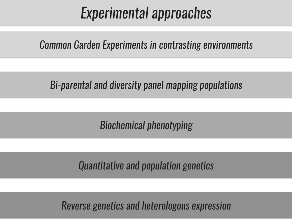 Experimental approaches Common Garden Experimen...