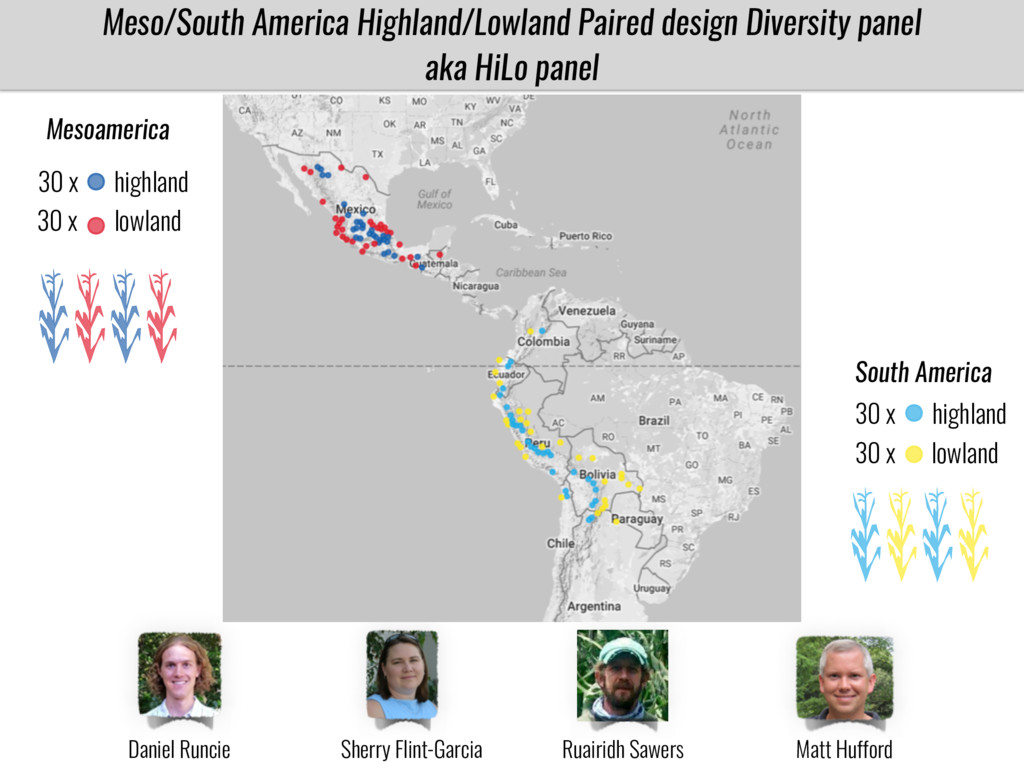 Meso/South America Highland/Lowland Paired desi...