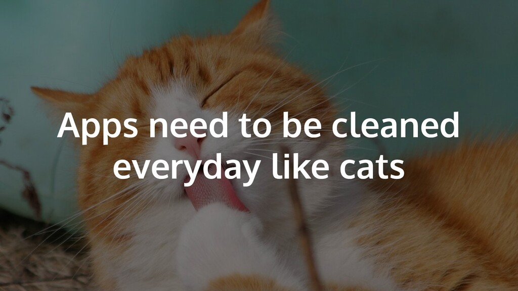 Apps need to be cleaned everyday like cats