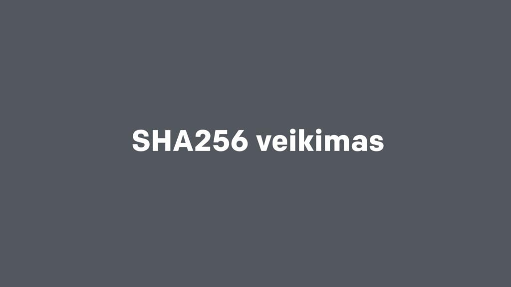 SHA256 veikimas