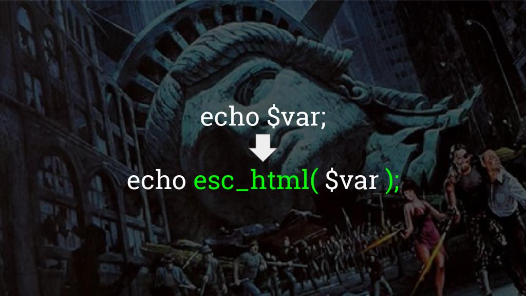 echo $var; echo esc_html( $var );