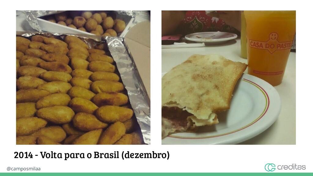 @camposmilaa 2014 - Volta para o Brasil (dezemb...