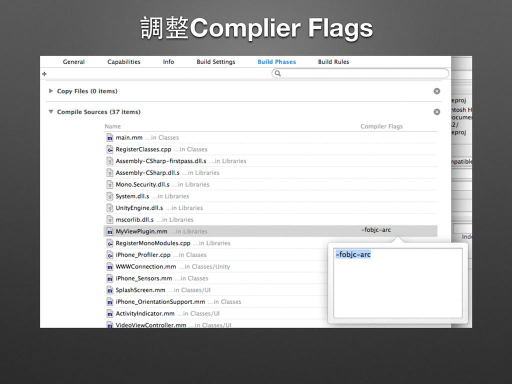 調整Complier Flags