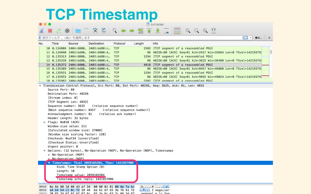 TCP Timestamp