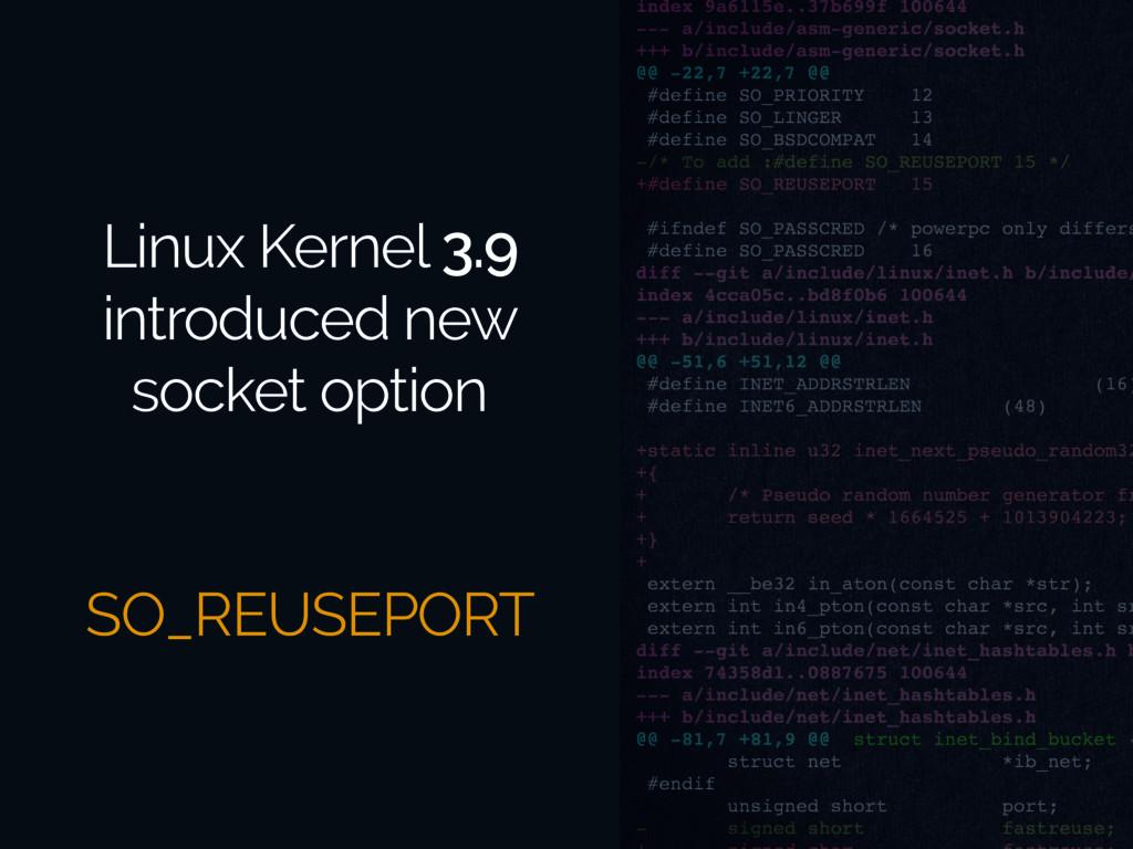 Linux Kernel 3.9 introduced new socket option S...
