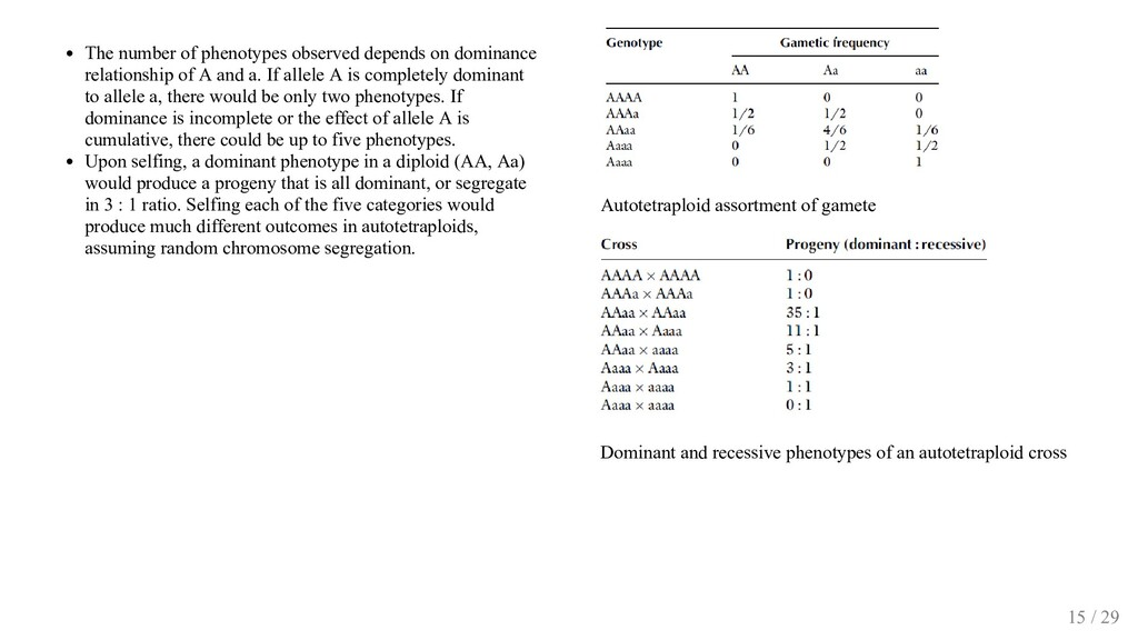 The number of phenotypes observed depends on do...