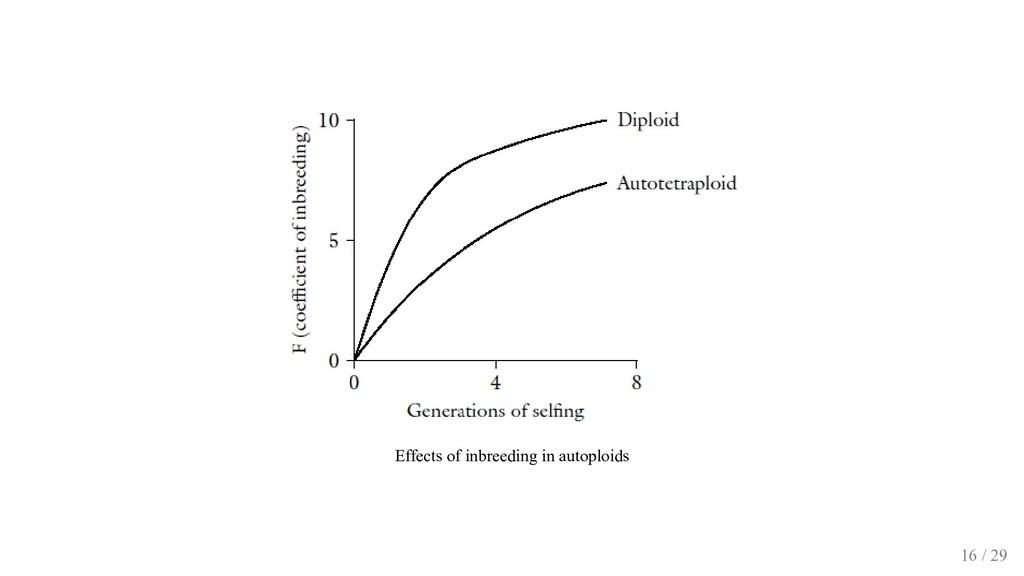 Effects of inbreeding in autoploids 16 / 29