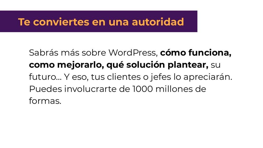 Sabrás más sobre WordPress, cómo funciona, como...