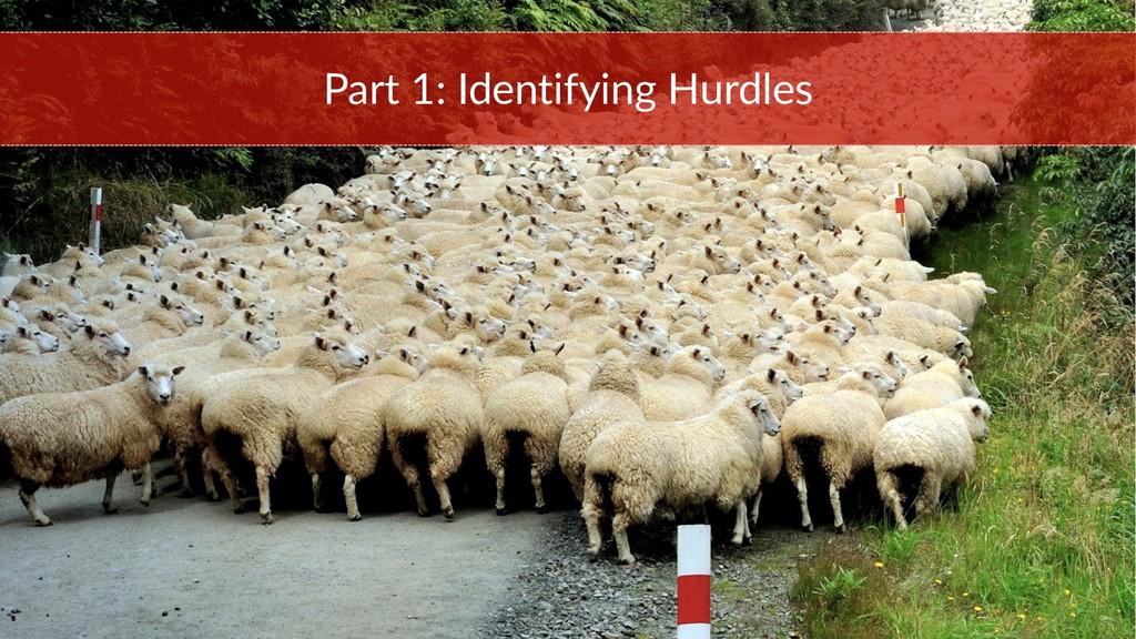 Part 1: Identifying Hurdles
