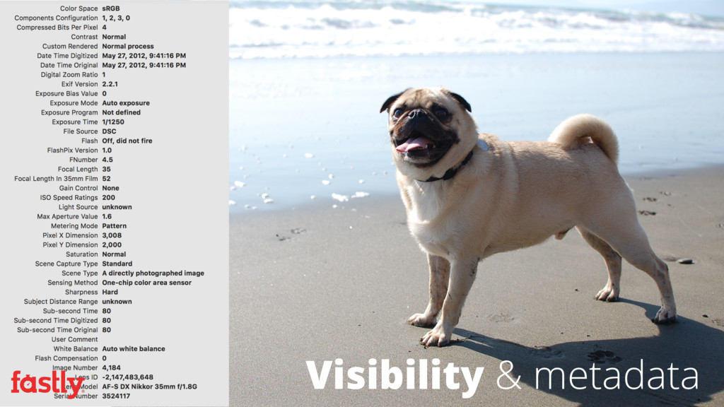 Visibility & metadata