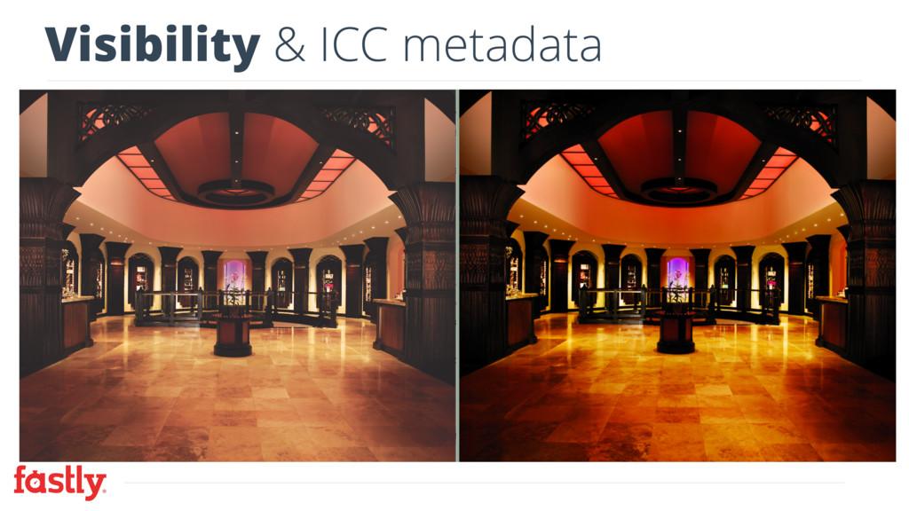 Visibility & ICC metadata