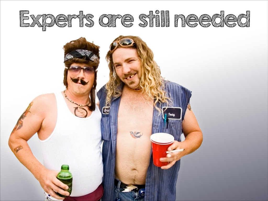 Experts are still needed