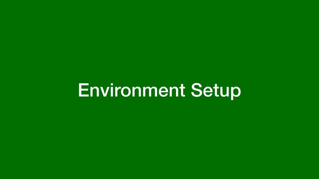 Environment Setup