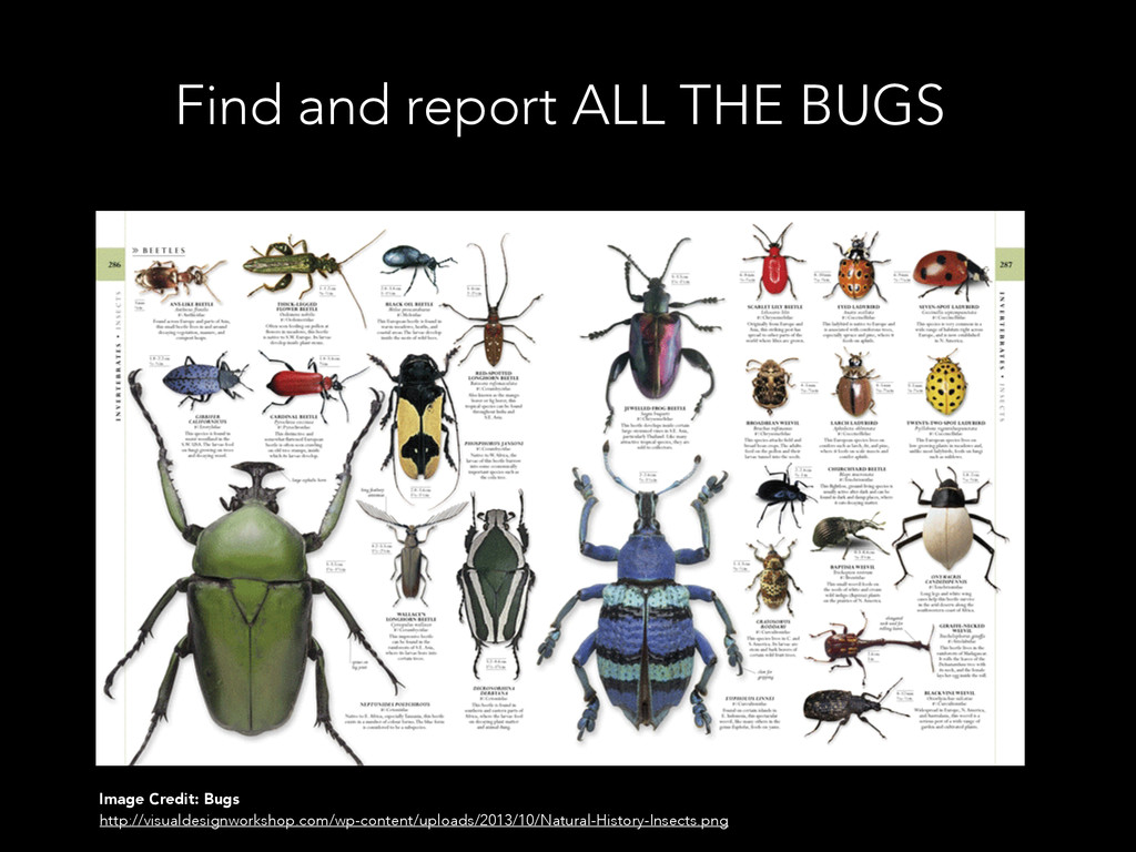Find and report ALL THE BUGS Image Credit: Bugs...