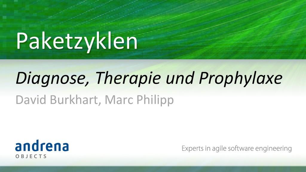 Paketzyklen  Diagnose, Therapie und ...