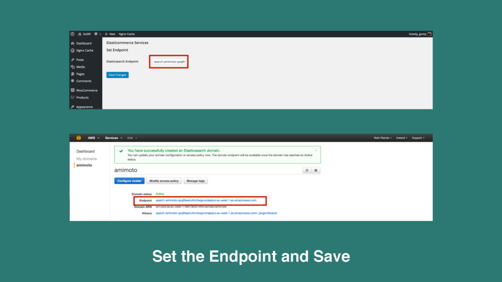 Set the Endpoint and Save