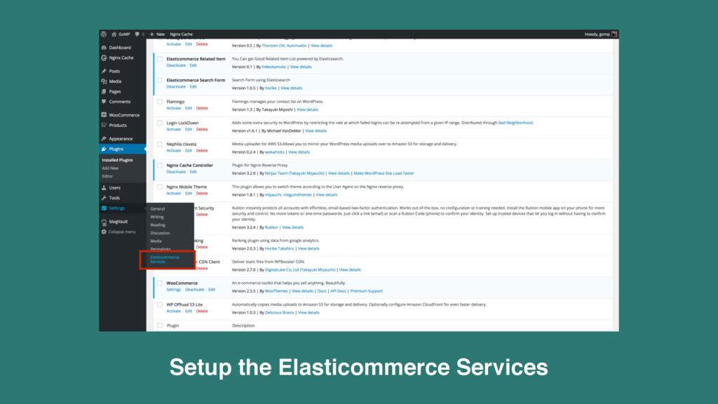 Setup the Elasticommerce Services