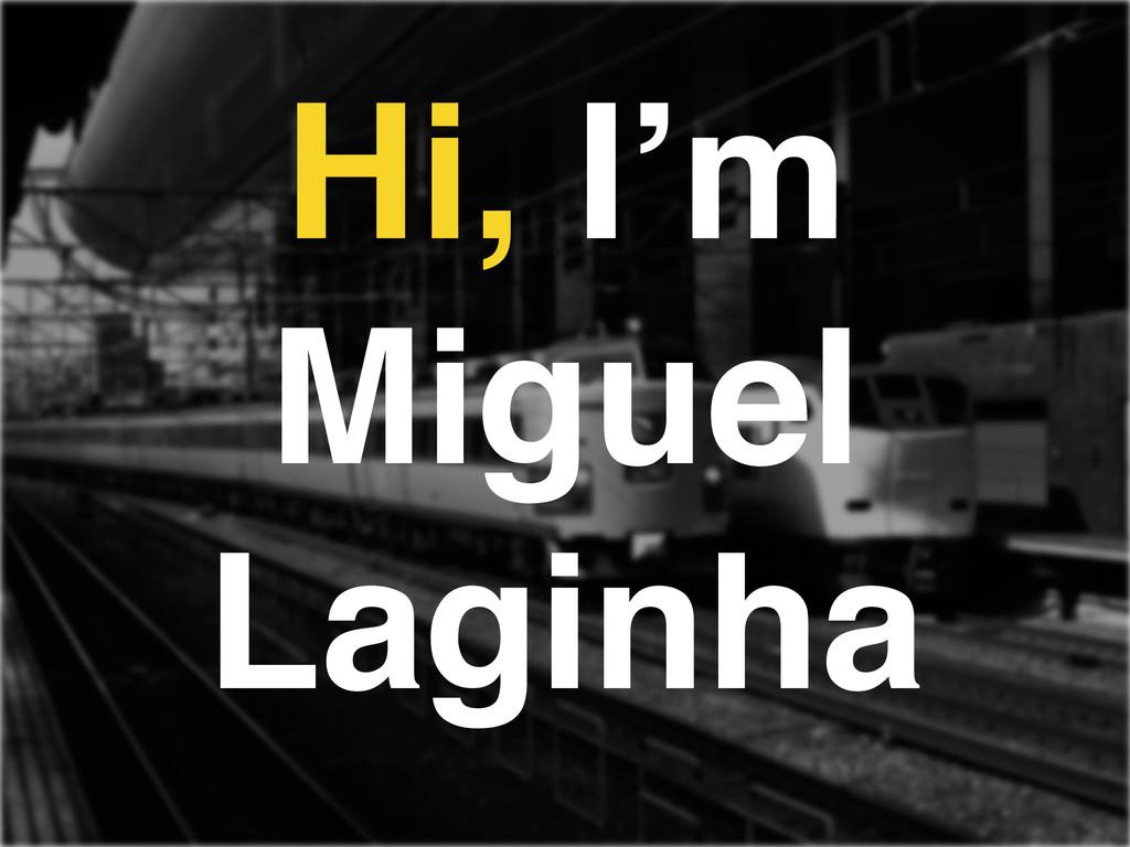 Hi, I'm Miguel Laginha
