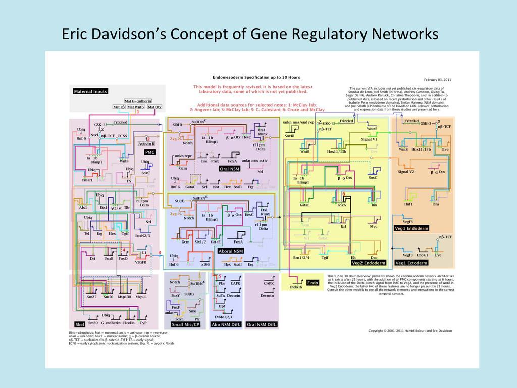 Eric Davidson's Concept of Gene ...