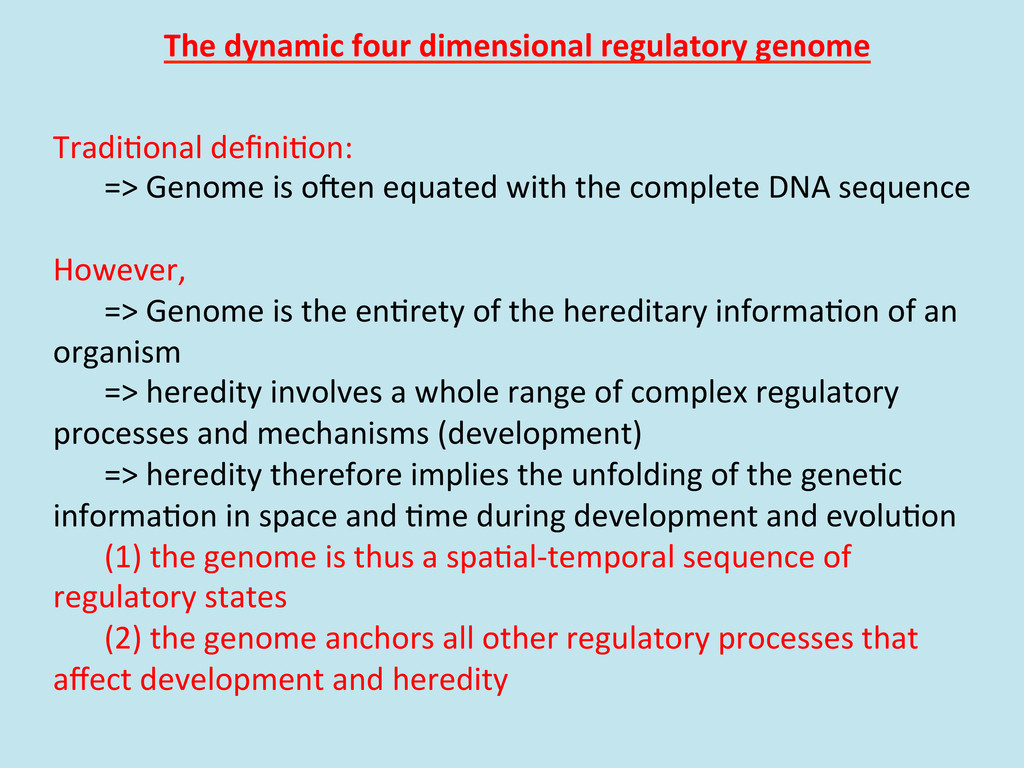 The dynamic four dimensional regula...