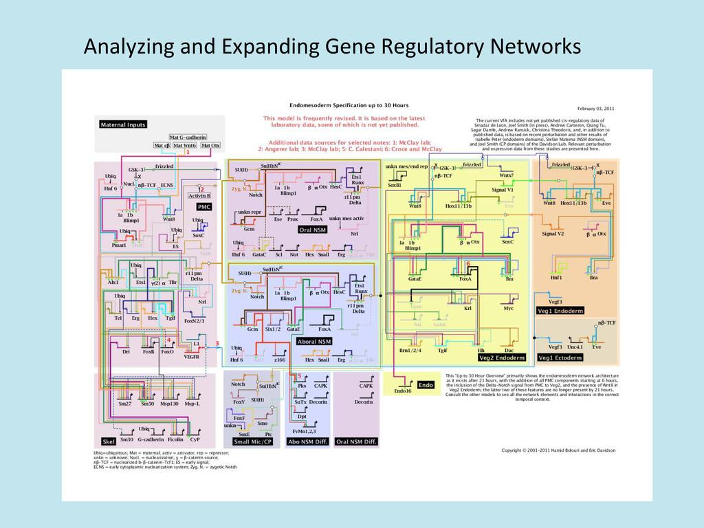 Analyzing and Expanding Gene Regula...