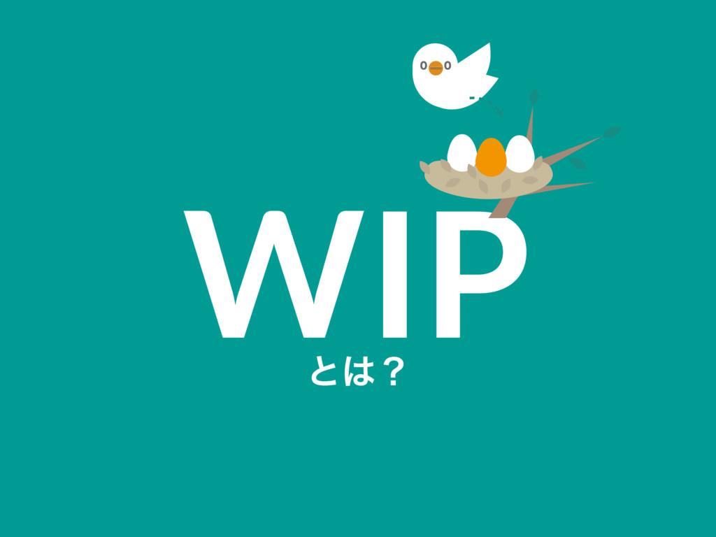 WIP ͱʁ