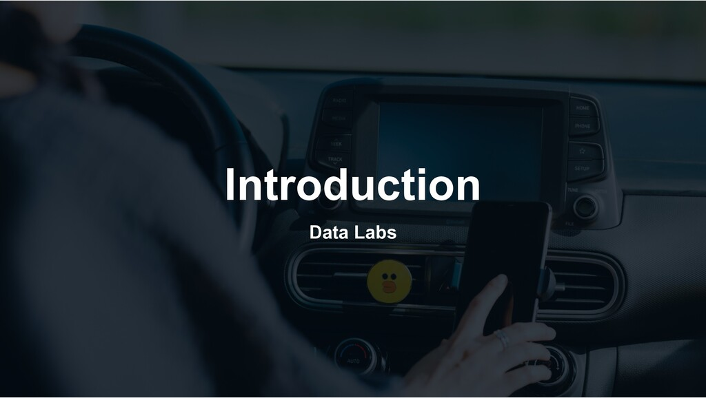 Introduction Data Labs