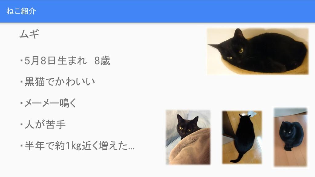 ねこ紹介 ムギ ・5月8日生まれ 8歳 ・黒猫でかわいい ・メーメー鳴く ・人が苦手 ・半年で...