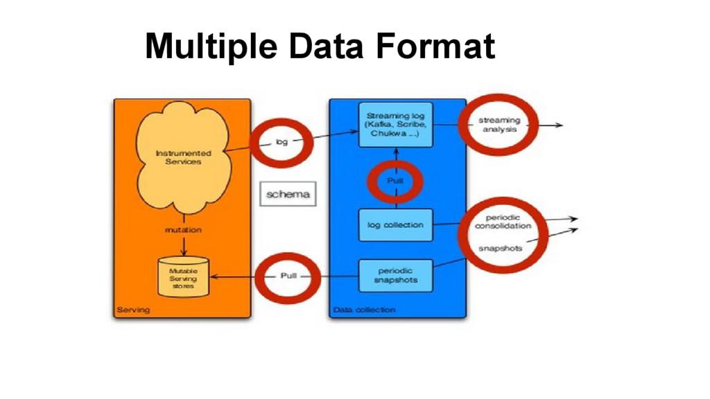 Multiple Data Format