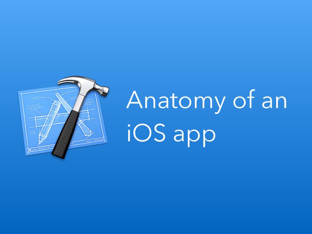 Anatomy of an iOS app