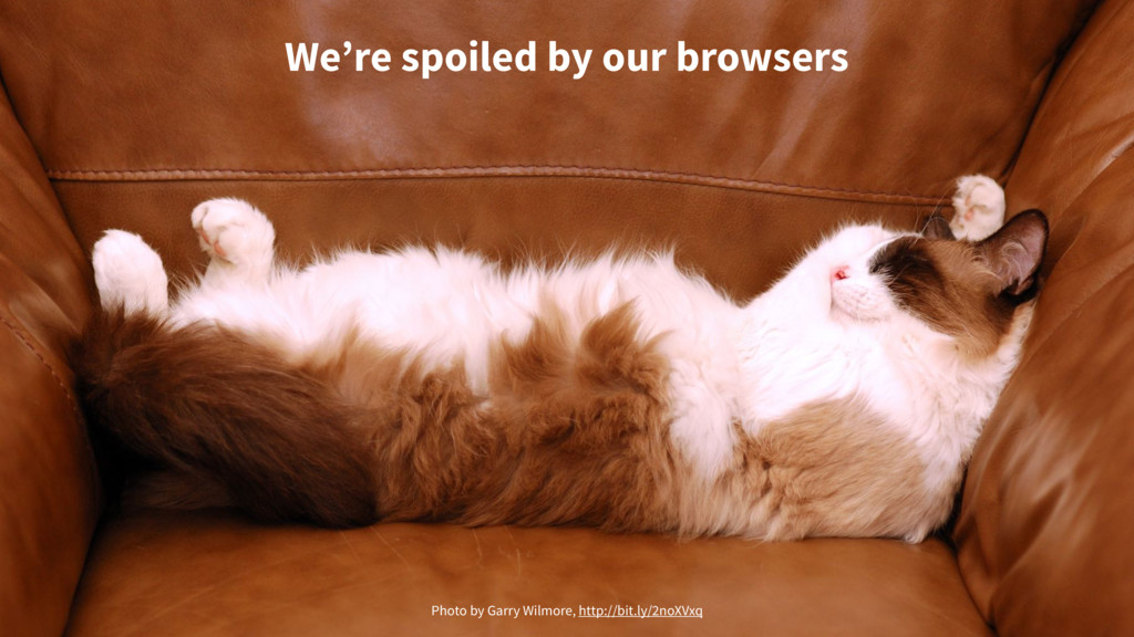 We're spoiled by our browsers Photo by Garry Wi...