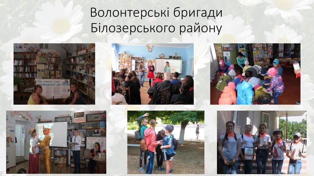Волонтерські бригади Білозерського району
