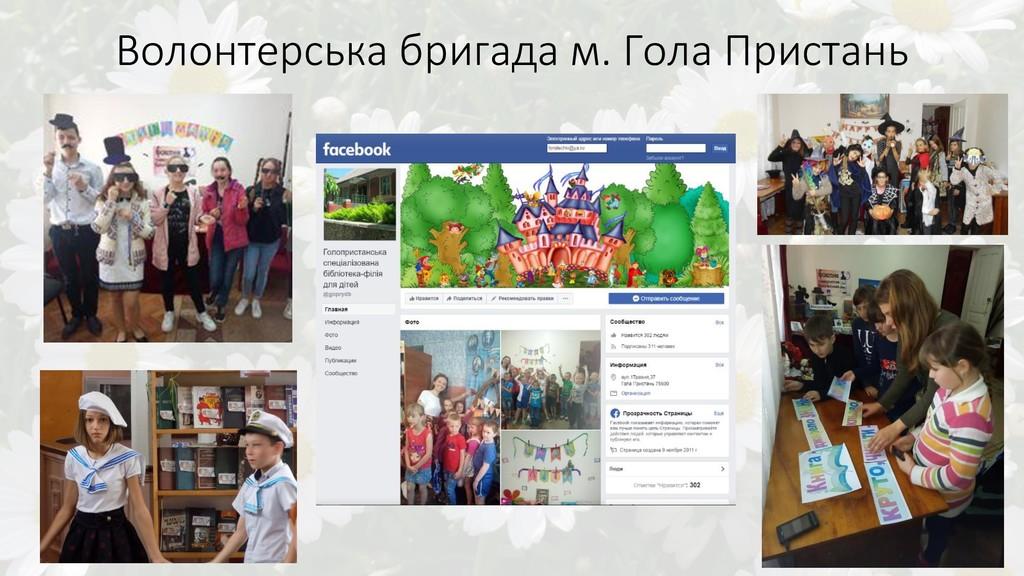 Волонтерська бригада м. Гола Пристань