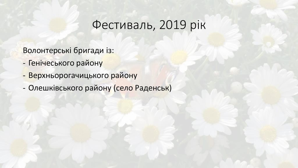 Фестиваль, 2019 рік Волонтерські бригади із: - ...