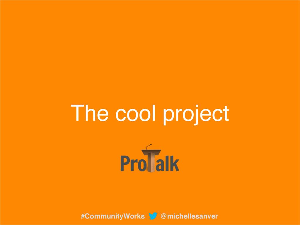 The cool project @michellesanver #CommunityWorks