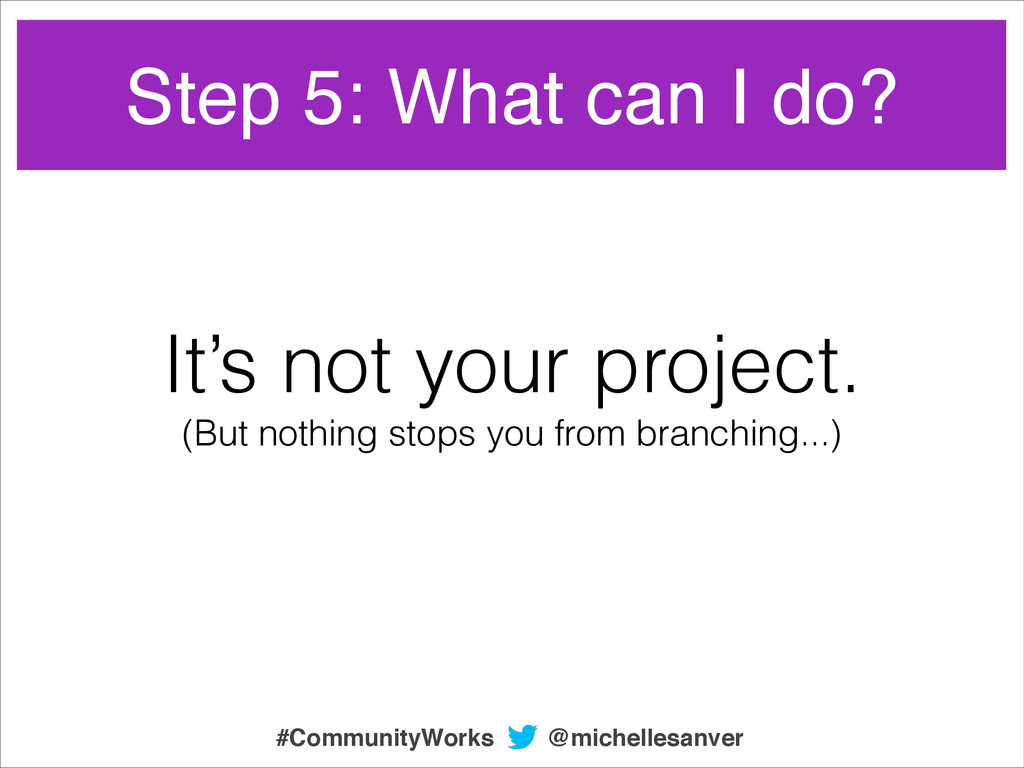 Step 5: What can I do? It's not your project. (...