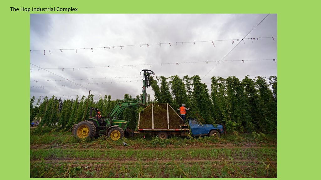 The Hop Industrial Complex