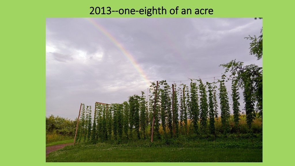 2013--one-eighth of an acre