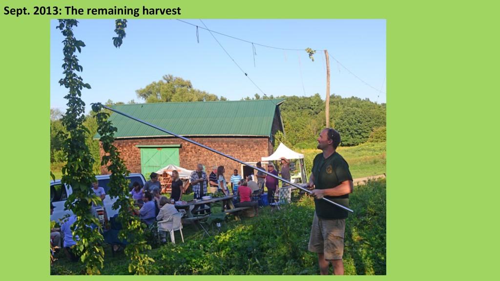 Sept. 2013: The remaining harvest